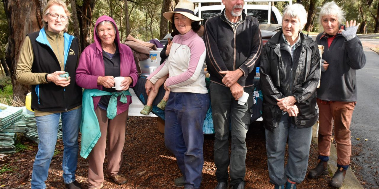 Bushcare volunteers out and about