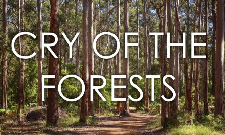 New documentary, Cry of the Forests, screening in Bridgetown